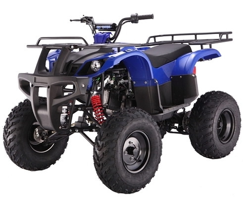 taotao 150cc atv service manual